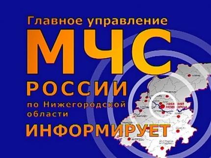 Девять человек погибли на пожарах в Нижегородской области за двое суток